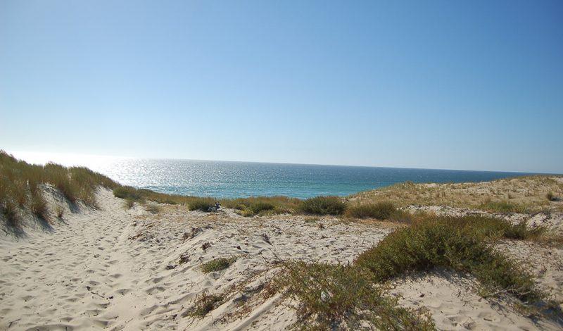 Les dunes de Labenne Océan