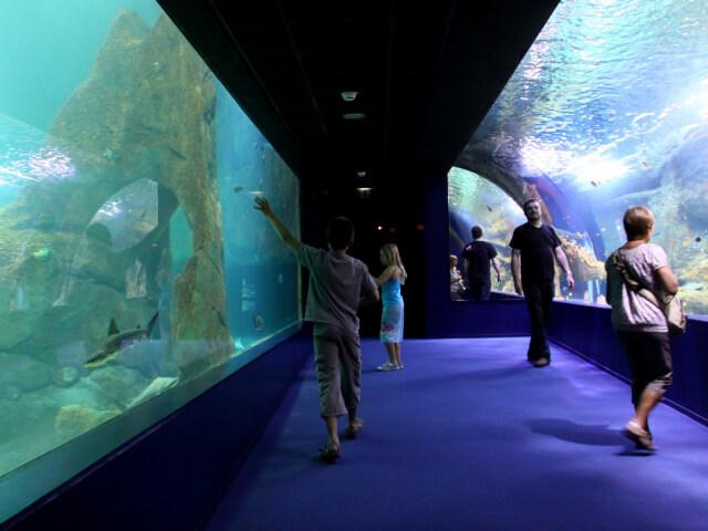 Musée de la mer - Biarritz
